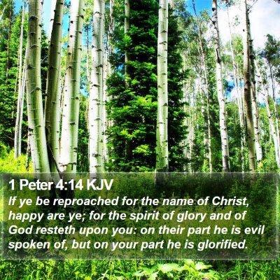 1 Peter 4:14 KJV Bible Verse Image