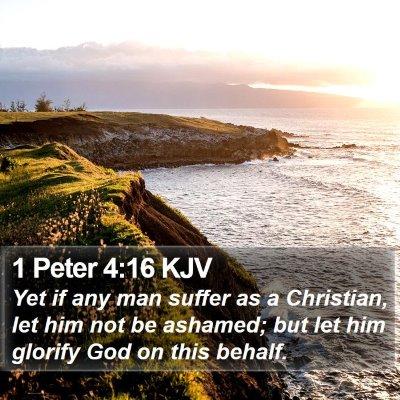 1 Peter 4:16 KJV Bible Verse Image