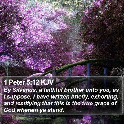 1 Peter 5:12 KJV Bible Verse Image