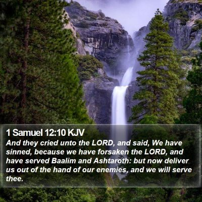 1 Samuel 12:10 KJV Bible Verse Image