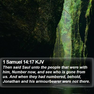 1 Samuel 14:17 KJV Bible Verse Image