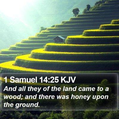 1 Samuel 14:25 KJV Bible Verse Image