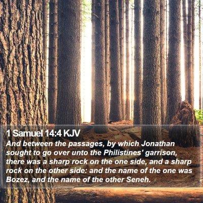 1 Samuel 14:4 KJV Bible Verse Image