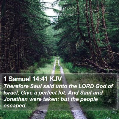 1 Samuel 14:41 KJV Bible Verse Image