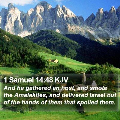 1 Samuel 14:48 KJV Bible Verse Image