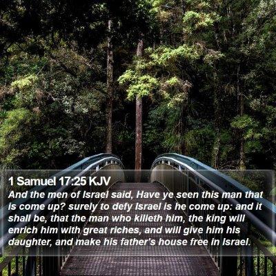 1 Samuel 17:25 KJV Bible Verse Image