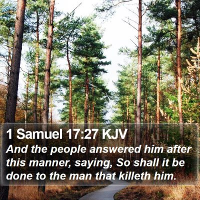 1 Samuel 17:27 KJV Bible Verse Image