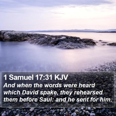 1 Samuel 17:31 KJV Bible Verse Image