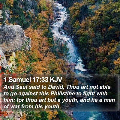 1 Samuel 17:33 KJV Bible Verse Image