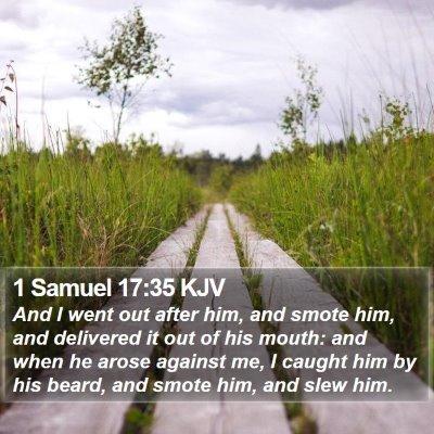 1 Samuel 17:35 KJV Bible Verse Image