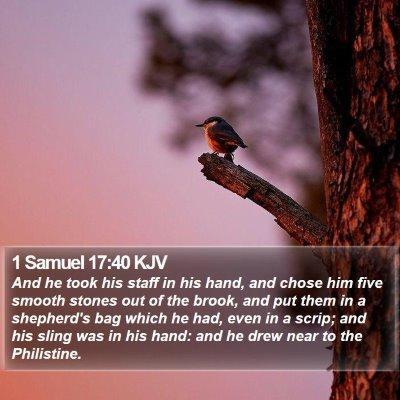 1 Samuel 17:40 KJV Bible Verse Image