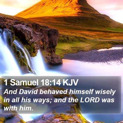 1 Samuel 18:14 KJV Bible Verse Image