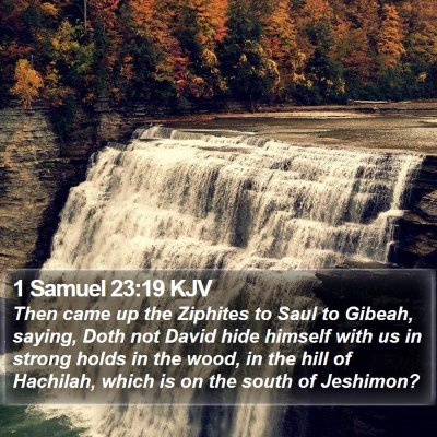 1 Samuel 23:19 KJV Bible Verse Image