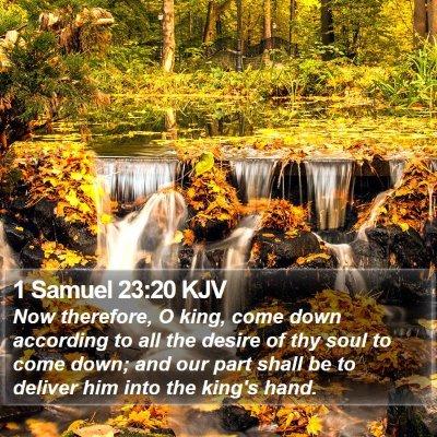 1 Samuel 23:20 KJV Bible Verse Image