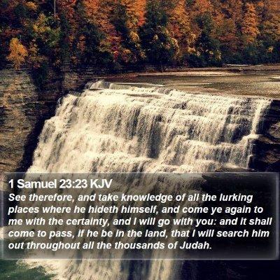 1 Samuel 23:23 KJV Bible Verse Image