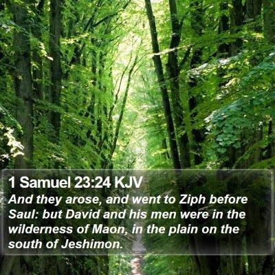 1 Samuel 23:24 KJV Bible Verse Image