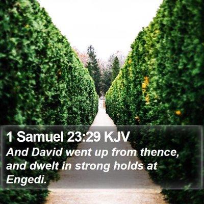 1 Samuel 23:29 KJV Bible Verse Image