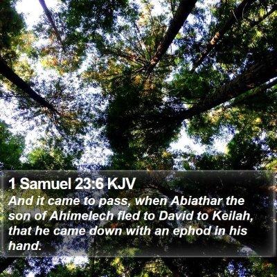 1 Samuel 23:6 KJV Bible Verse Image