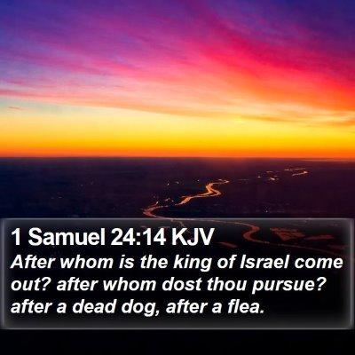 1 Samuel 24:14 KJV Bible Verse Image