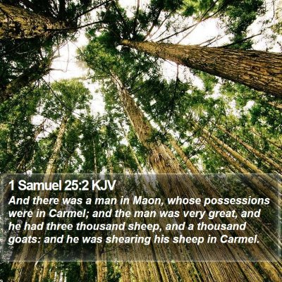 1 Samuel 25:2 KJV Bible Verse Image