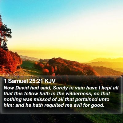 1 Samuel 25:21 KJV Bible Verse Image
