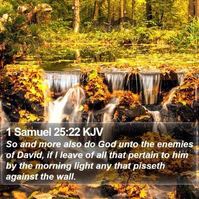 1 Samuel 25:22 KJV Bible Verse Image