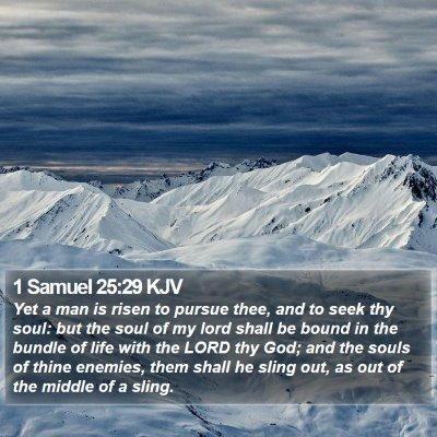 1 Samuel 25:29 KJV Bible Verse Image