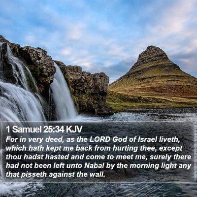 1 Samuel 25:34 KJV Bible Verse Image