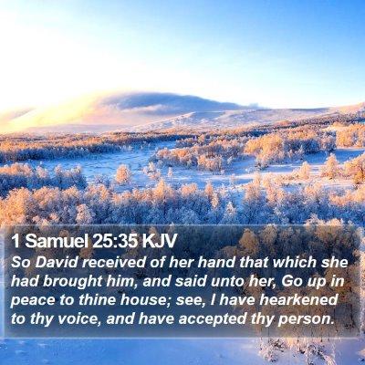 1 Samuel 25:35 KJV Bible Verse Image