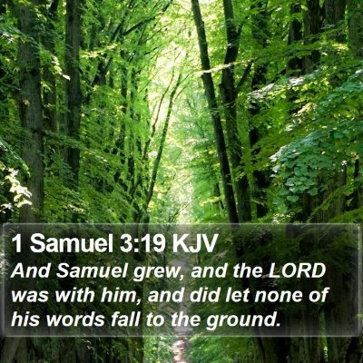 1 Samuel 3:19 KJV Bible Verse Image