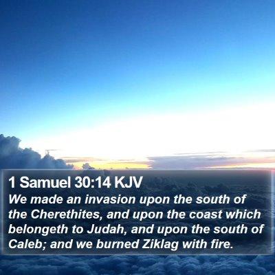 1 Samuel 30:14 KJV Bible Verse Image