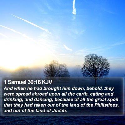 1 Samuel 30:16 KJV Bible Verse Image