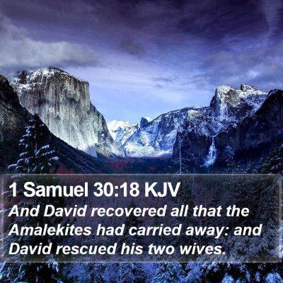 1 Samuel 30:18 KJV Bible Verse Image