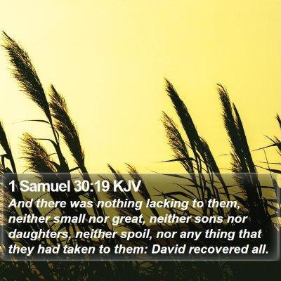 1 Samuel 30:19 KJV Bible Verse Image