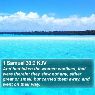 1 Samuel 30:2 KJV Bible Verse Image