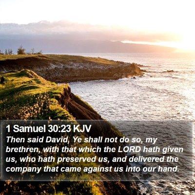 1 Samuel 30:23 KJV Bible Verse Image