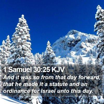1 Samuel 30:25 KJV Bible Verse Image