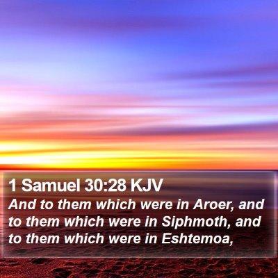 1 Samuel 30:28 KJV Bible Verse Image