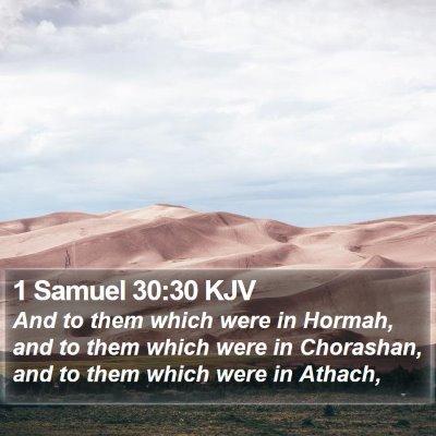 1 Samuel 30:30 KJV Bible Verse Image