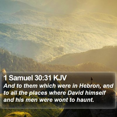 1 Samuel 30:31 KJV Bible Verse Image