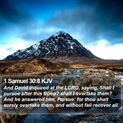 1 Samuel 30:8 KJV Bible Verse Image