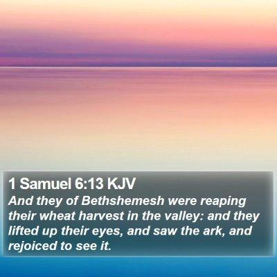 1 Samuel 6:13 KJV Bible Verse Image
