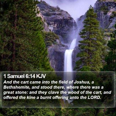 1 Samuel 6:14 KJV Bible Verse Image