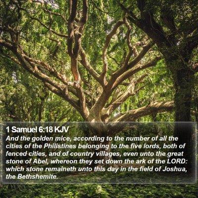 1 Samuel 6:18 KJV Bible Verse Image