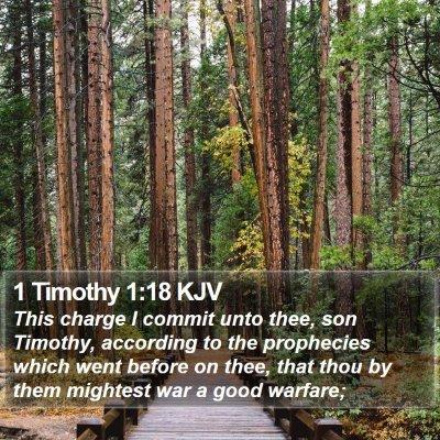 1 Timothy 1:18 KJV Bible Verse Image
