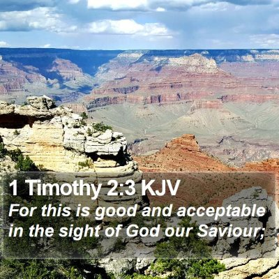 1 Timothy 2:3 KJV Bible Verse Image