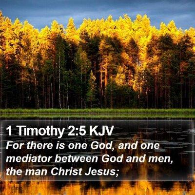 1 Timothy 2:5 KJV Bible Verse Image