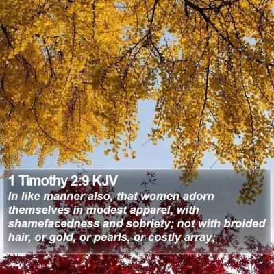 1 Timothy 2:9 KJV Bible Verse Image