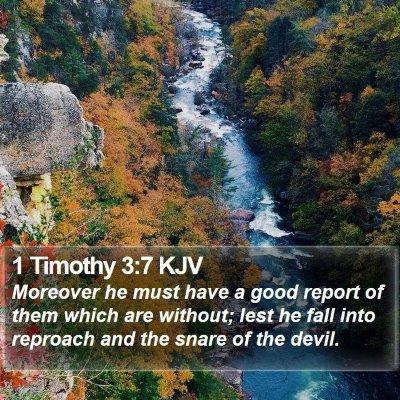 1 Timothy 3:7 KJV Bible Verse Image
