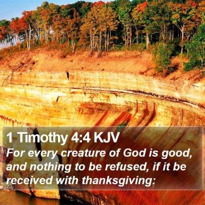 1 Timothy 4:4 KJV Bible Verse Image